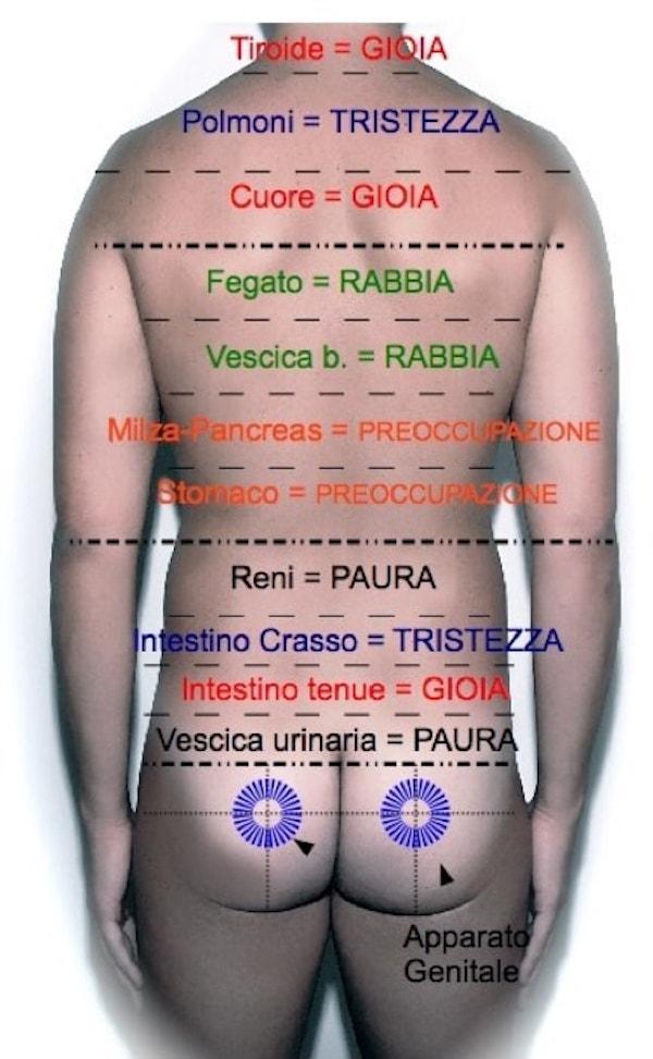 Massaggio Metamerico Venezia Mestre Scorze e Martellago